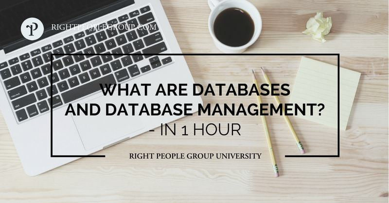 What are databases and database management?