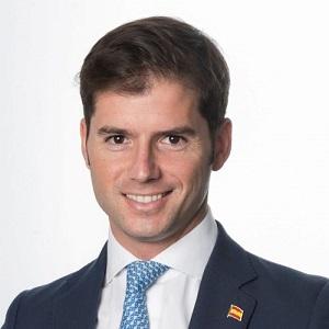 Vicente Campos-Guereta Díez - Consultant Manager Spain